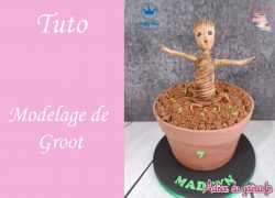 tuto-video-modelage-groot-pate-a-sucre
